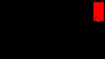 deltagerfloj