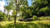 Shelter i Fri natur